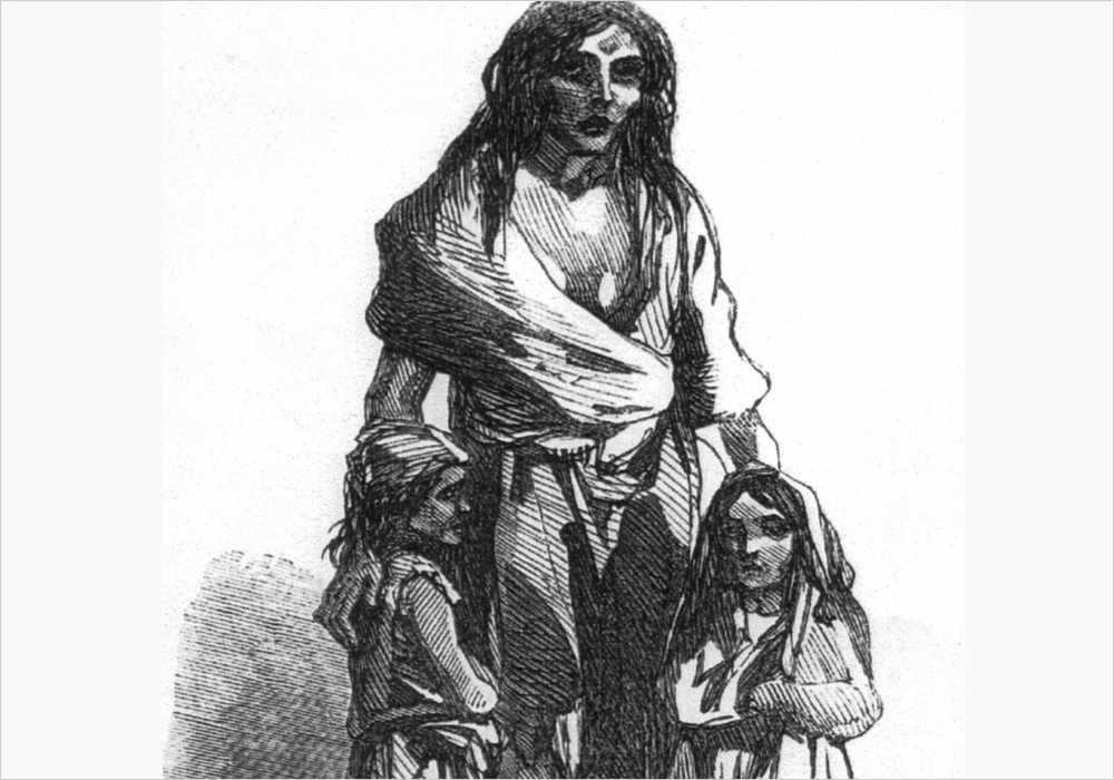 Irish Potato Famine | Zinn Education Project
