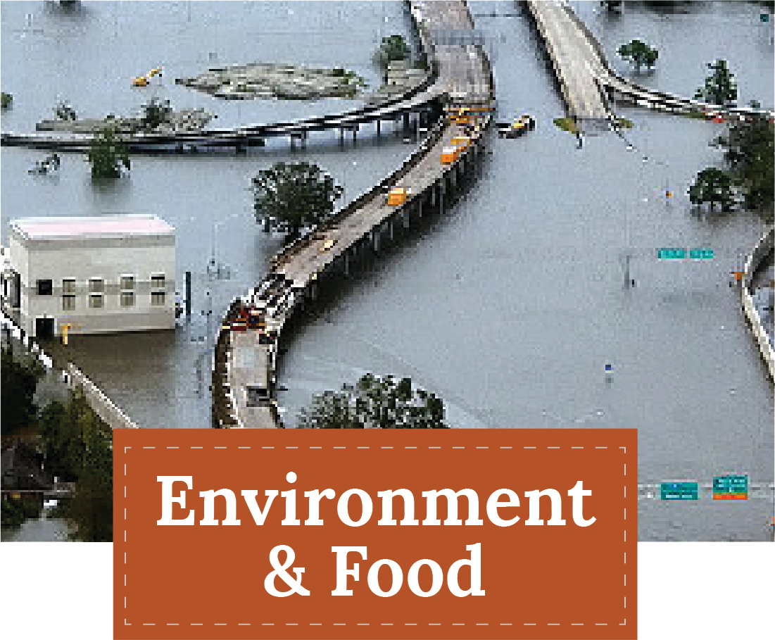 Theme: Environment and Food | Zinn Education Project