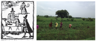 Diggers and female farmers | Zinn Education Project