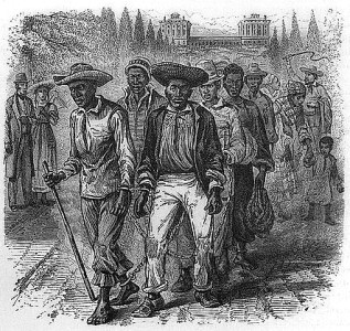 A shackled group of enslaved people passing the Capitol grounds. Image: Library of Congress.