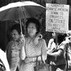 Jung Sai Strikers   Zinn Education Project: Teaching People's History