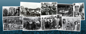 People's history movement collage | Zinn Education Project