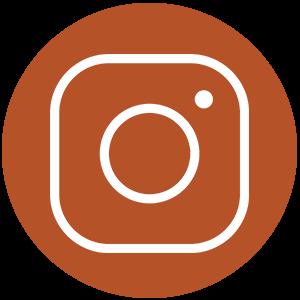 Follow us in Instagram | Zinn Education Project