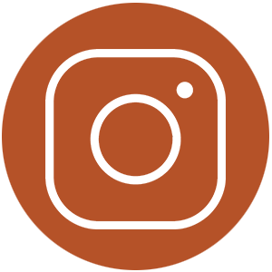 Follow us in Instagram | Zinn Education Project